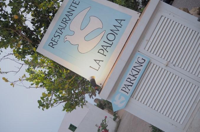 restaurant la paloma ibiza
